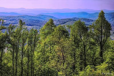 North Carolina Spring Original