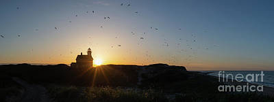 Photograph - North Light Sunset Panorama  by Michael Ver Sprill