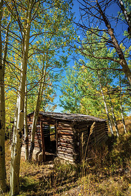 Mellow Yellow - North Park Cabin by Christopher Thomas
