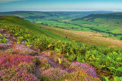Photograph - North York Moors National Park by David Ross