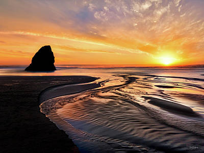 Photograph - Northern California Coast Sunset by Leland D Howard