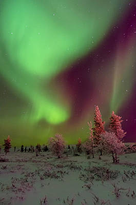 Photograph - Northern Lights Vista by Kind Regards, Huggy's Pics