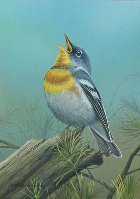 Painting - Northern Parula  by Mike Brown