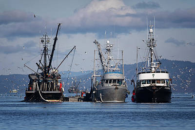 Photograph - Northwest Bay Seiners by Randy Hall