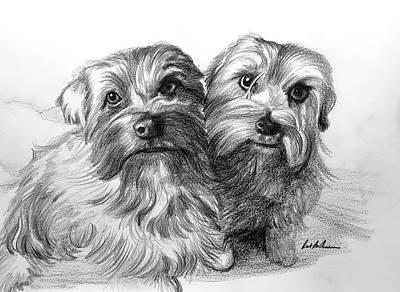 Drawing - Norwegian Terriers by Robert Korhonen