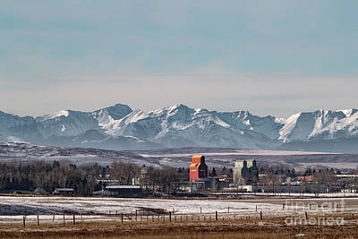 Photograph - November Nanton by Brad Allen Fine Art