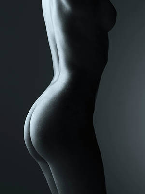 Photograph - Nude Female Torso by Tim Hawley