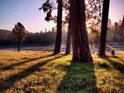Photograph - Ochoco Meadow by Leland D Howard