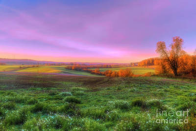 Royalty-Free and Rights-Managed Images - October morning 12 by Veikko Suikkanen