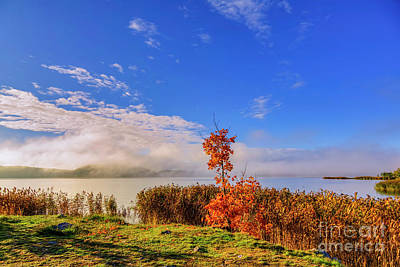 Royalty-Free and Rights-Managed Images - October morning by Veikko Suikkanen
