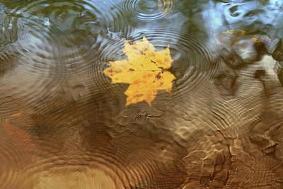 Photograph - October Rain by Rob Blair