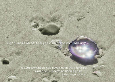 Photograph - October Sparkle Quote by JAMART Photography