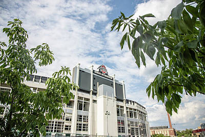 Photograph - Ohio Stadium And Buckeye Tree  by John McGraw