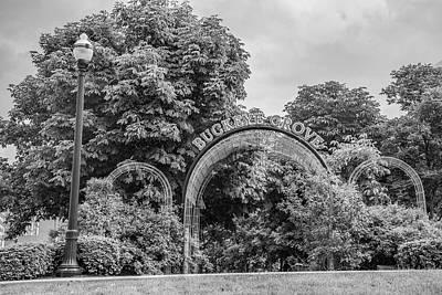 Photograph - Ohio State University Black And White Buckeye Grove by John McGraw