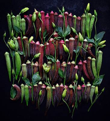 Photograph - Okra Colors by Sarah Phillips