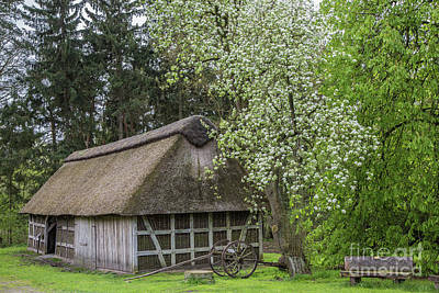 Photograph - Old Barn In Spring by Eva Lechner