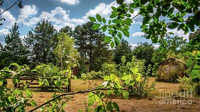 Farmhouse Rights Managed Images - Old Barns on Sunny Day Royalty-Free Image by Aaron Shortt