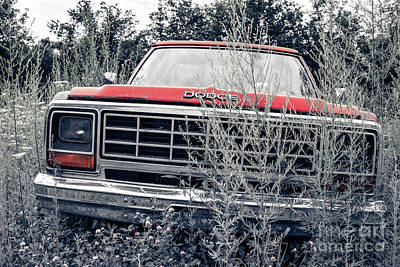 Dodge Truck Wall Art - Photograph - Old Dodge Pickup In The Weeds White River Junction Vermont by Edward Fielding
