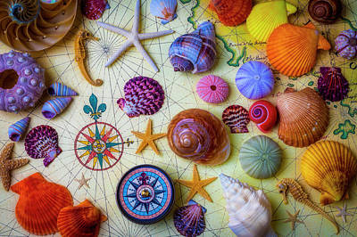 Photograph - Old Map With Seashells by Garry Gay