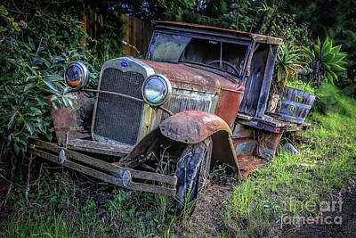 Photograph - Old Model Aa Ford In The Jungle 2 by Edward Fielding