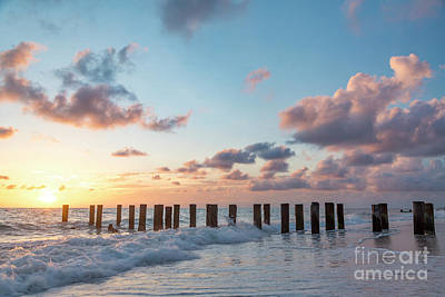 Photograph - Old Pier Pilings II by Brian Jannsen