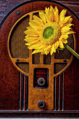 Photograph - Old Radio And Sunflower by Garry Gay
