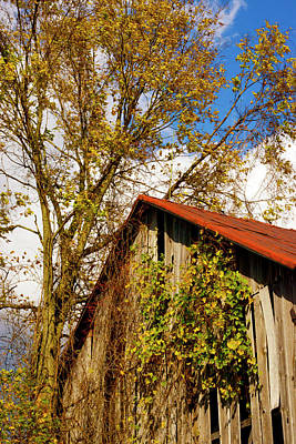 Photograph - Old Red Roof by Paul W Faust - Impressions of Light
