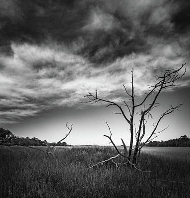 Photograph - Old Remains  by Donnie Whitaker