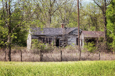 Photograph - Old Rodney Home by Susan Rissi Tregoning