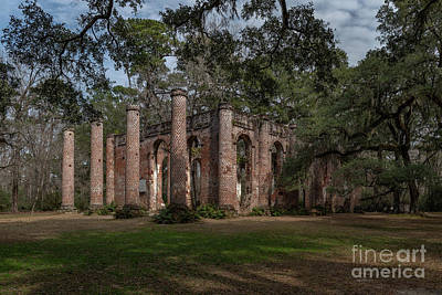 Photograph - Old Sheldon Church Ruins - Live Oaks by Dale Powell