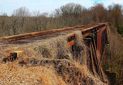Photograph - Old Train Trestle Color by Joseph C Hinson Photography