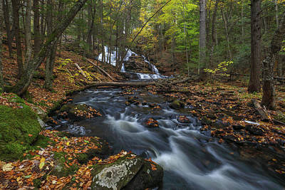 Photograph - Old Wilton Falls by Juergen Roth