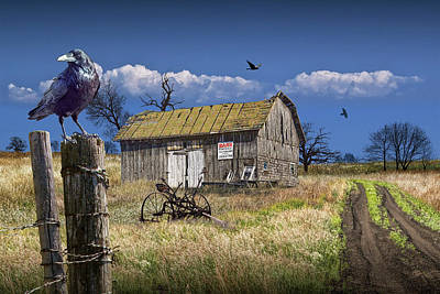 Photograph - Old Wooden Barn For Sale With Black Crows by Randall Nyhof