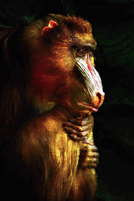 Mixed Media - Old World Mandrill by Susan Maxwell Schmidt