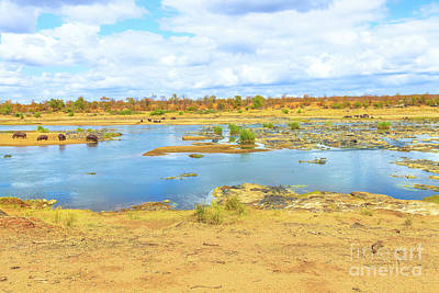 Photograph - Olifants River Kruger by Benny Marty