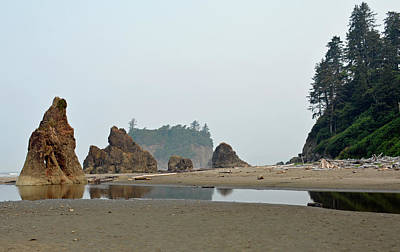 Olympic National Park Seastacks Art Print