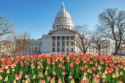 Capitol Building Wall Art - Photograph - On A Bed Of Tulips by Todd Klassy