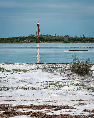 Photograph - On Anclote Key by Steven Sparks