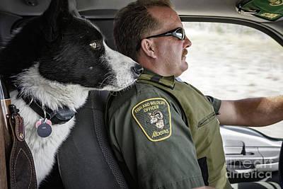 Photograph - On Patrol by Brad Allen Fine Art