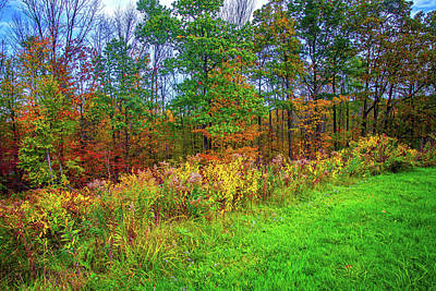 Photograph - On The Edge Of Fall by Lynn Bauer
