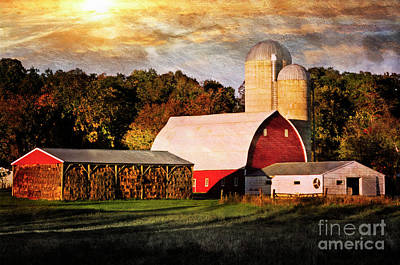 Photograph - On The Farm by Scott Kemper