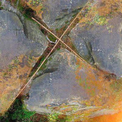 Digital Art - On The Wood by Payet Emmanuel