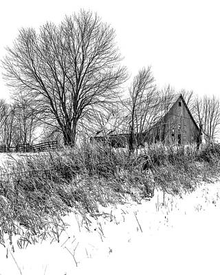 Little Mosters - On Top the Snowy Hill BW by Rick Grisolano Photography LLC