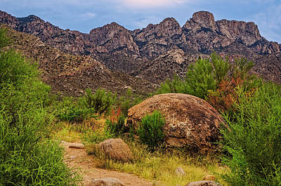 Mark Myhaver Rights Managed Images - On Trail - Catalinas h1123 Royalty-Free Image by Mark Myhaver