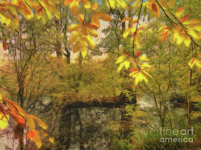 Photograph - Once A Pond A Time by Leigh Kemp