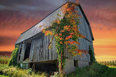 Photograph - Once Upon An Autumn Barn by Lynn Bauer
