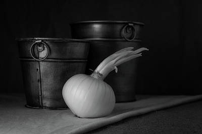 Onion Wall Art - Photograph - Onion In Black And White by Tom Mc Nemar