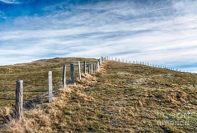 Mountain Royalty-Free and Rights-Managed Images - Open Country by DiFigiano Photography