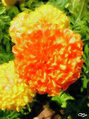 Going Green - Orange and Yellow Flower by Douglas Brown