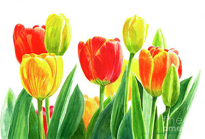Tulips Watercolor Wall Art - Painting - Orange And Yellow Tulips Horizontal Design by Sharon Freeman